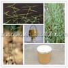 Natural Hot sale Spreading Hedyotis Herb Extract,High quality Spreading Hedyotis Herb Extract powder