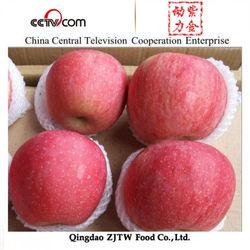 2015 New crop import apple fruit