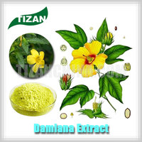 Hot Sale Damiana Extract 10:1 Natural Sex Health Drug