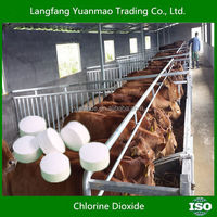 Company Look for Agent DistributorFugicide Disinfectant Sterilant for Livestock and Poultry/ Chlorine Dioxide/factory wholesale