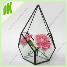 "Use ""DK brand"" clear hanging glass terrarium decor up your fairy garden or terrarium"