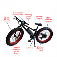 Qiangsheng low price fat tyre mountain motor bicycle