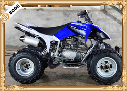 Raptor Design 250cc Quad Bike For Sale