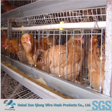 poultry farm house design/automatic chicken layer cage