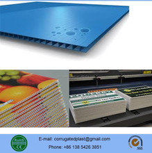 Polypropylene PP Hollow Coroplast Sheet/Board