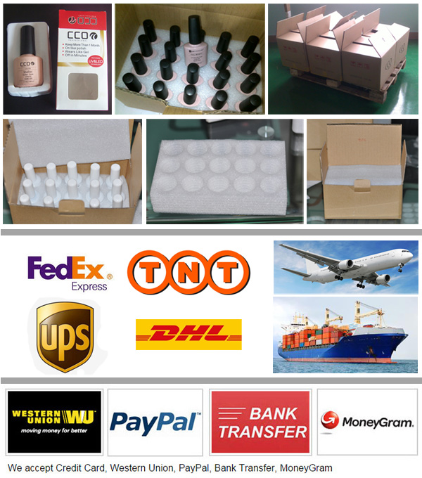 Shipping and Payment
