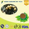 Professional supplier for Loquat leaf extract HPLC 10% Corosolic acid