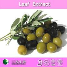 high quality oleuropein/hydroxytyrosol olive leaf extract