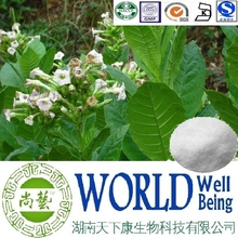 Hot sale Tobacco extract/Solanesol 98%/Tobacco leaf extract/Anticancer plant extract
