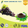 Hot Sale Grape Seed Extract / Proanthocyanidin 1% ~ 98% for Anti-radiation & Eliminating free radicals