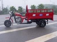 250cc motorcycle tricycle type spyder