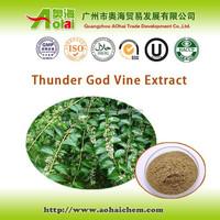 High demand Tripterygium wilfordii / thunder god vine extract ratio12:1 to anti-tumor/anti-cancer