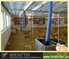 Made in China broiler feeding equipment broiler chick