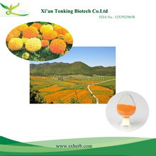 Super quality herbal marigold p.e(lutein)