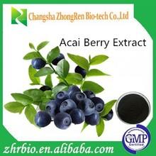Hot Sale Acai Berry Extract Powder 20:1