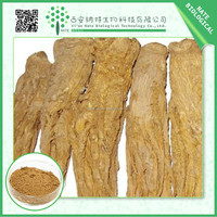 Alibaba China supplier herbal extract chinese angelica root extract 10:1