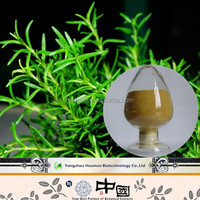 Hight quality products rosemary leaf extract carnosic acid preservatives in herbal medicines