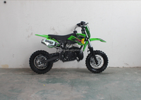 CE 2 Stroke Gas Motorcycle For Kids