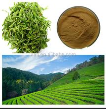 100% Natural green tea powder/Green tea extract in China