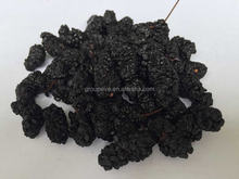 Organic Traditions Dried Black Mulberries