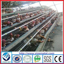 alibaba express Hens Cages For Big Farm /Chicken Feeding Cages