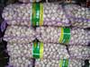 chinese garlic new crop laiwu jinxiang garlic shandong garlic