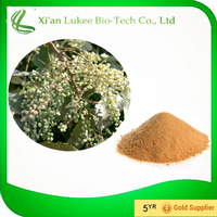 Galla Chinensis Powder / Galla Chinensis P.E / Gallic acid