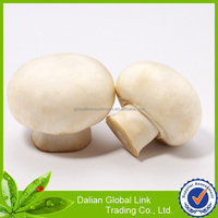 mushroom and truffles