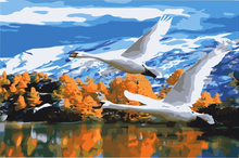 Cheap Hot Selling Modern Famous digital oil Paintings of Animal