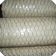 hot sale small hole chincken wire mesh / chicken coop wire mesh / galvanized hexagonal wire mesh