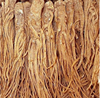 Doubleteeth Angelica Root Extract