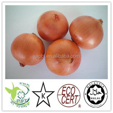100% natural and 100% purity AD White Onion Powder
