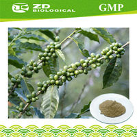 Solvent extraction plant pure green coffee bean extract powder