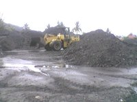 Indonesian GVC Steam Coal of GCV 5, 500 Kcal / KG rejection 5, 200 kcal / KG