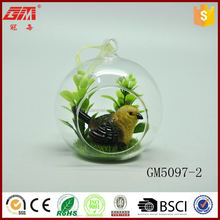 new design factory supplier hotsell glass terrarium for decoration