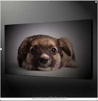 Gallery wrapped dog puppy canvas art prints for living room
