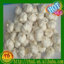white garlic/chinese new fresh garlic on sale