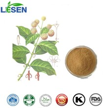 High Quality Aharpleaf Ucaria Stem with Hooks Extract / Gambir Plant Extract / Gambir Plant Ramulus Uncariae Cum Uncis Powder