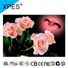 European and American markets hot sale build for African Violet, Basil, Orchids, Roses lvd grow light