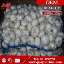 (2014 Low Price) Chinese Fresh Red Garlic/Purple Garlic