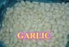 2015 Crop Chines Garlic IQF Peeled Garlic ,Garlic Clove