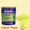 Caboli water-based paint spray paint colors for waterproofing roof paint
