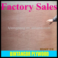 bintangor plywood factory in linyi family business