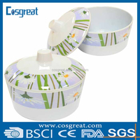 unbreakable melamine bowl set with lid