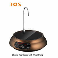 Hot sale high quality mini electric tea maker with water pump