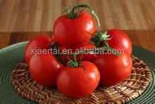 Canned food Factory direct sale canned tomato paste/canned whole peeled tomatoes