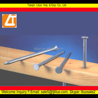 Tianjin hot sale! Common iron nail used in construction