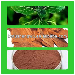Organic Natural High Quality Yohimbe Bark Extract with Best Price 3%-99% Yohimbines