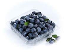 PET plastic clamshell container for fruit blueberry strawberry cherry
