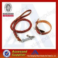 Novelty durable charm customized plastic coated nylon dog collars